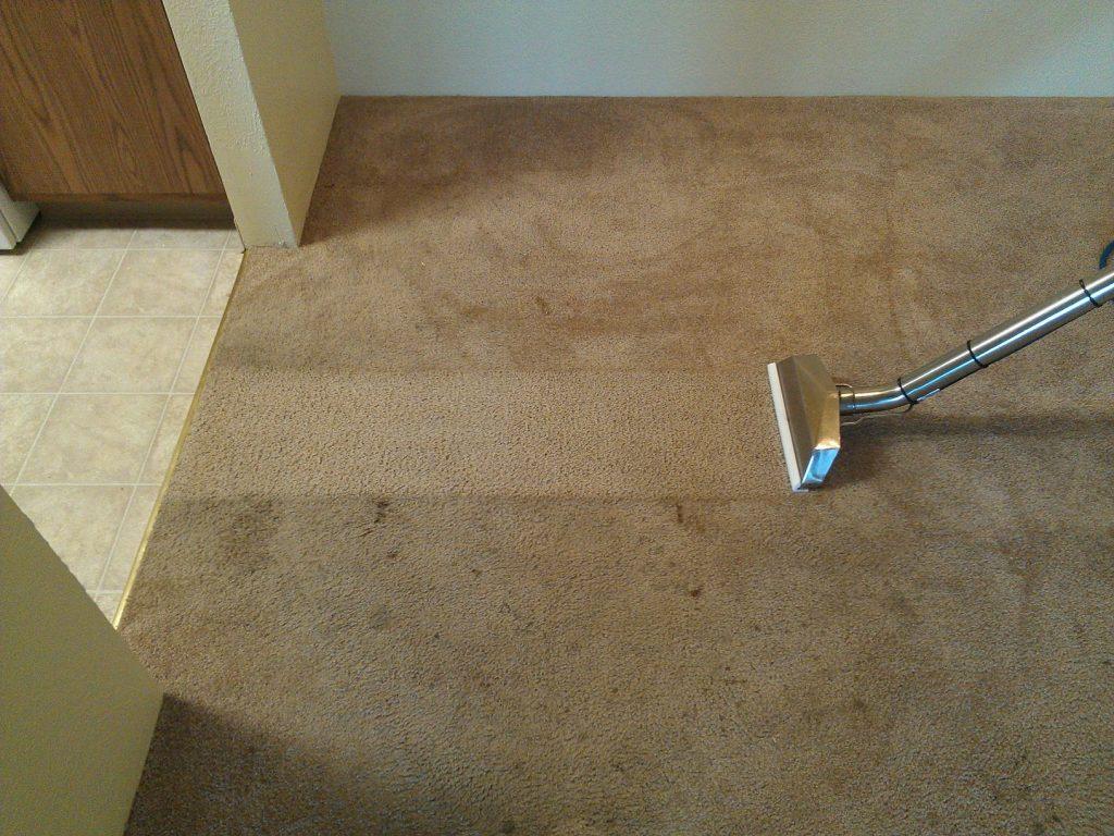 Carpet Cleaning London Supreme Furnishings6